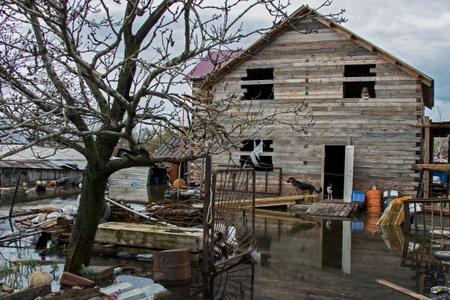 Неменее 350 домов стали непригодны для жизни после наводнения вПриморье