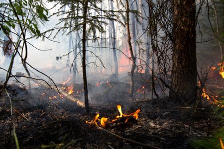 Бурятию вновь накрыл дым отлесных пожаров вИркутской области