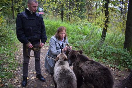 2-х брошенных ручных медвежат обнаружили влесу вЗеленограде