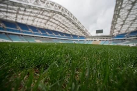 Тюльпанов: Подготовка спортивных объектов кЧМ-2018 вСочи идет пографику