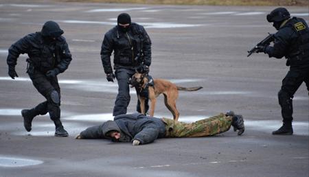 ВКарачаево-Черкесии задержаны боевики, присягнувшиеИГ