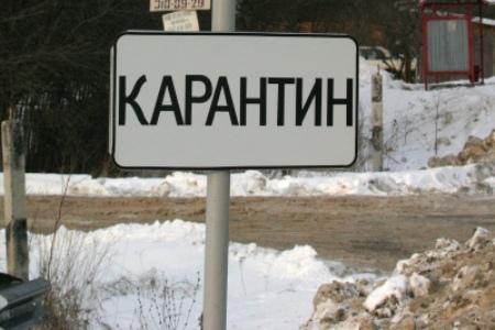 В Касторенском районе установлен карантин по бешенству
