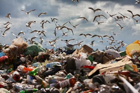 ВТульской области займутся ликвидацией экологических «горячих точек»