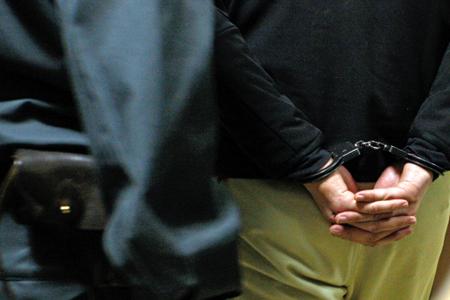 Задержаны подозреваемые впохищении 5-ти картин Левитана