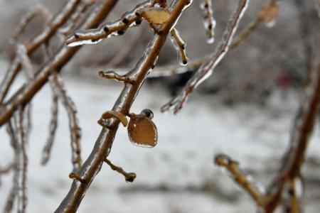Ледяной дождь отмечался в российской столице