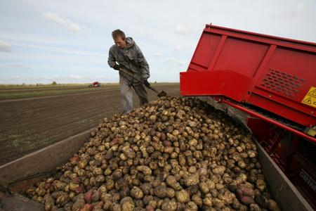 ВСтаврополе летом начнут производить зерновозы набазе белорусских фургонов