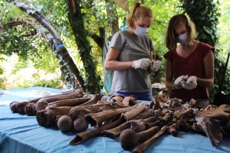 Сибирские ученые отыскали умамонтов «человеческие» болезни