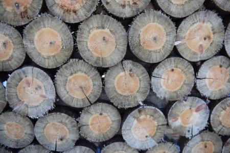 Возведения деревянных домов попрограмме реновации небудет— Собянин