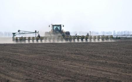 ВРязанской области посеяно неменее 100 тыс. гектаров яровых зерновых культур