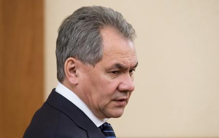 Шойгу назвал Украинское государство, Сирию иКорейский полуостров стратегически главными дляРФ регионами