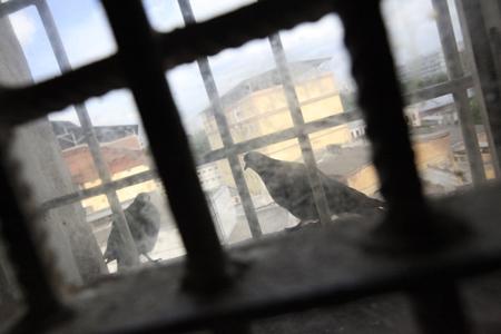 ВКурганской области вынесли вердикт поделу обубийстве семьи