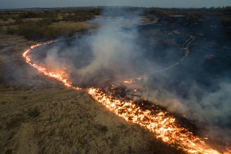 В прошедшие сутки на далеком Востоке действовало 65 лесных пожаров