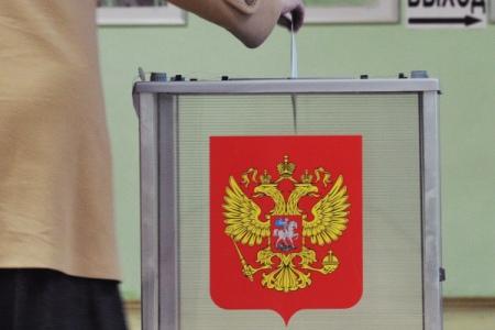 Зарубежные наблюдатели поведали оходе выборов вРязанской области