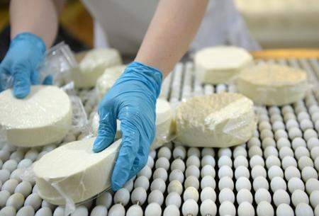 «Сыр адыгейский» будет только адыгейским— Суд постановил