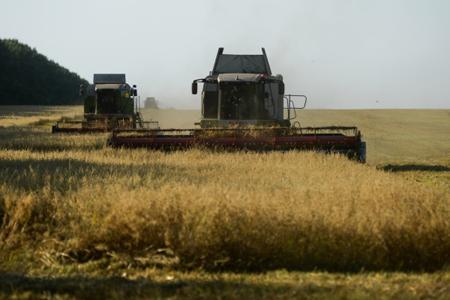Свыше 40 тыс. тонн яровых зерновых культур убрано вДагестане