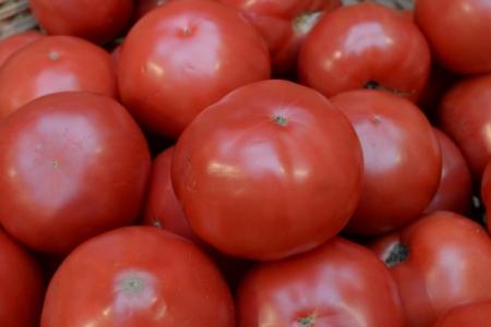 Поставки томатов изТурции в РФ неповлияют нарынок— Ткачёв