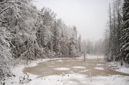 ВЧелябинской области появился новый монумент природы