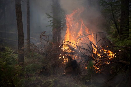 ВЗабайкалье лесной пожар подошел вплотную ккрупному поселку