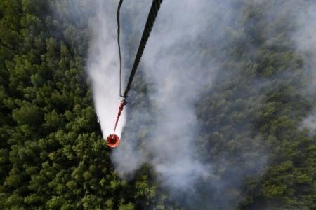 Все лесные пожары потушили на Дальнем Востоке