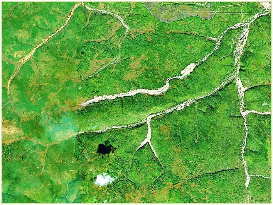 Белым цветом на космических снимках обозначены русла рек, где была разрушена естественная растительность. Источник: ESRI, DigitalGlobe, GoeEye, представлено пресс-службой WWF России