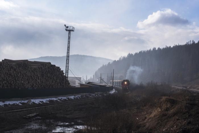РЖД привлекут общественность для контроля вырубки леса под развитие БАМа и Транссиба - Белозеров