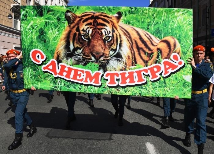 День тигра во Владивостоке 27 сентября отметят без традиционного шествия