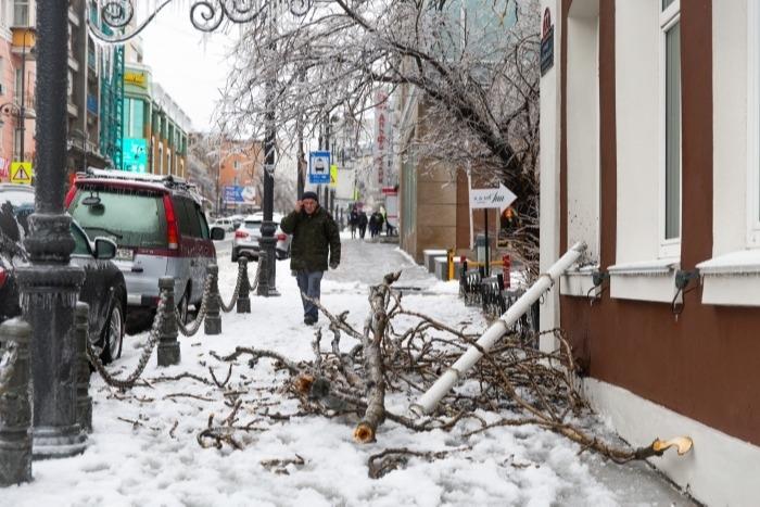Уже более 290 млн рублей ушло на ликвидацию ледяного шторма в Приморье